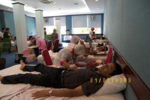 Permalink ke Sudah 630.000 cc Darah Mengalir dari KDD Riau Kompleks PT.RAPP
