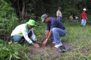 Permalink ke BANGUN GEDUNG SEKOLAH DAN TANAM POHON Lagi, Karyawan RAPP Gotong Royong bersama Masyarakat