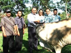 Permalink ke RAPP Serahkan 209 Ekor Hewan Kurban ke 110 Desa