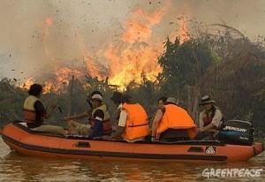 Permalink ke GREENPEACE INVESTIGAS PEMBERIAN KONSESI DI RIAU Pemerintah Indonesia Kurang Inisiatif Atasi Perubahan Iklim