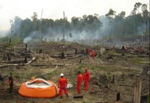 Permalink ke RAPP-BKSDA Riau Padamkan Kebakaran Lahan di Teso Nilo