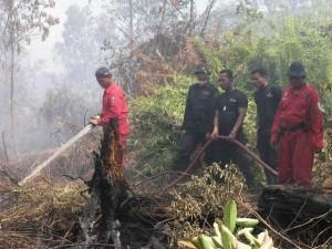 Permalink ke Tim Fire Fighter Riaupulp Padamkan Kebakaran Lahan