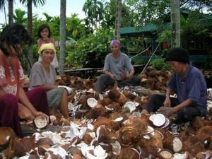 Permalink ke Banyak Petani Kelapa di Inhil Jadi OKB