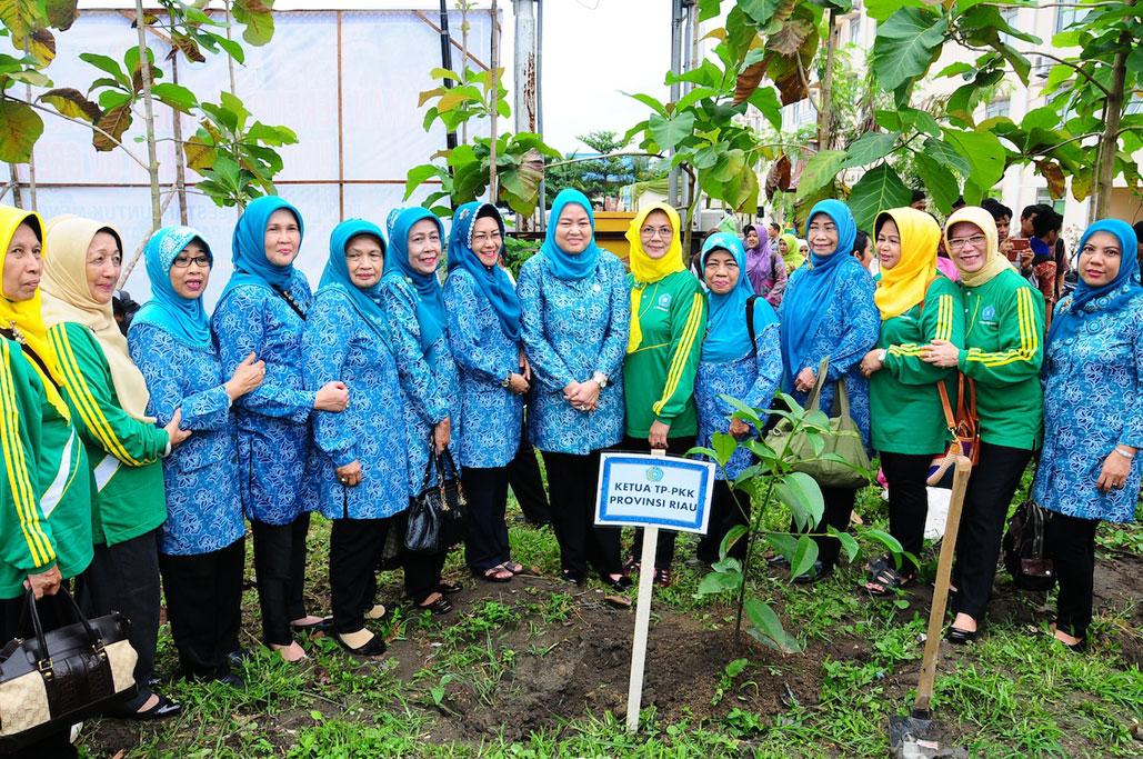 Permalink ke Gerakan Perempuan Tanam dan Pelihara Pohon