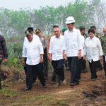 Presiden Jokowi Tinjau Lokasi Bekas Kebakaran Lahan