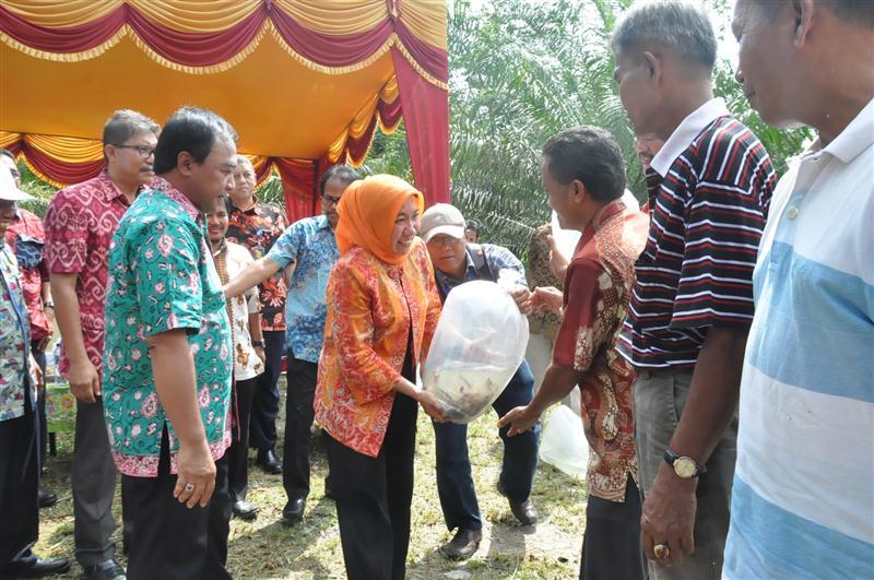 Plt Gubri Kadis Perikanan Kelautan serahkan bantuan kepada Masyarakat di Kampar2