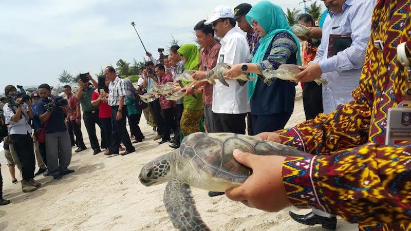 Permalink ke Bangka Cultural Wave, Detak Baru Pariwisata Bangka