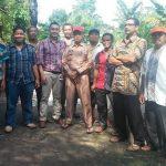 Kelompok Binaan Chevron di Rohil Panen 1900 Kg Ikan Lele