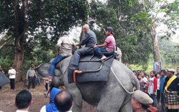 Permalink ke Gubri Tunggangi Gajah saat kunjungan ke Wisata Rimbo Tujuh Danau Buluh Cina