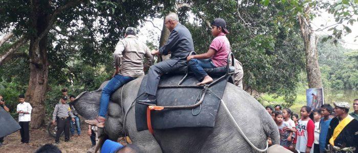Gubri Tunggangi Gajah saat kunjungan ke Wisata Rimbo Tujuh Danau Buluh Cina
