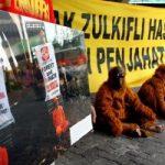 Greenpeace Minta Menhut Hentikan Izin Pembabatan Hutan