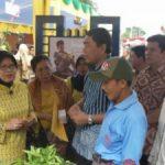 Ketua Tim PKK Riau Kunjungi Stand Pangan Riaupulp – CECOM Foundation