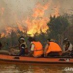 GREENPEACE INVESTIGAS PEMBERIAN KONSESI DI RIAU Pemerintah Indonesia Kurang Inisiatif Atasi Perubahan Iklim